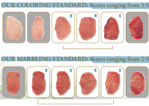 Chairmans Reserve Pork grading scale